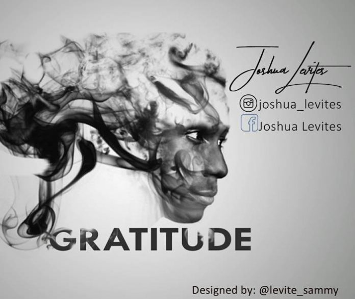 Gratitude by Joshua